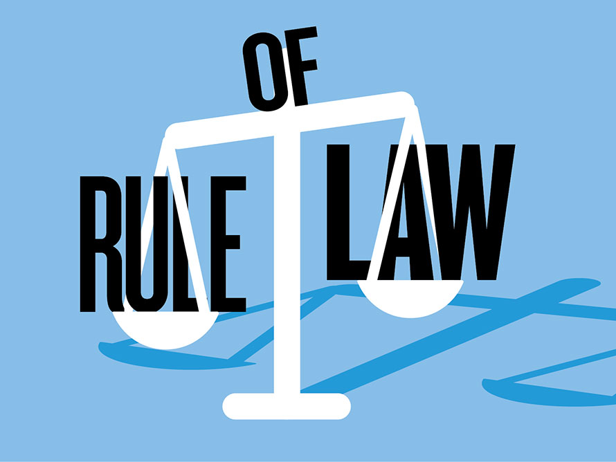 Expert Rule Of Law Opinion